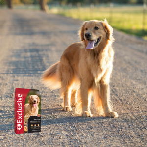 Pet Food Frequent Purchase Program