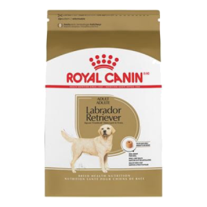 Royal Canin Labrador Retriever Adult Dry Dog Food 30-lb Bag